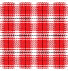 tartan vector image vector image