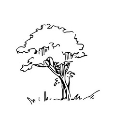 Hand drawn architect tree architectural sketch vector