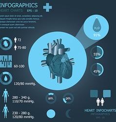 Heart Infocharts vector image