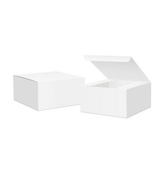 Two square boxes with opened and closed lid vector