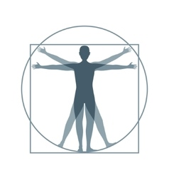 Cartoon Silhouette Vitruvian Man vector image