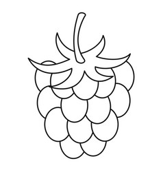raspberry icon outline style vector image