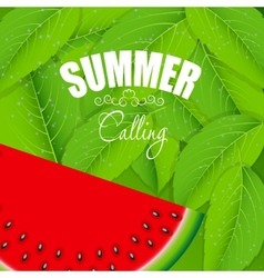 Abstract Natural Summer Background with Watermelon vector image