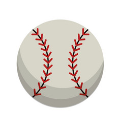Ball baseball sport equipment vector