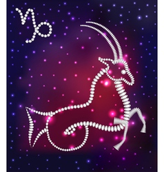 Cosmos of the stars of the constellation Capricorn vector