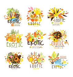 Exotic summer vacation colorful graphic design vector