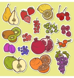 Fruits and berries sketch stickers colored vector image