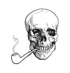 hand drawn human skull smoking lacquered wooden vector image