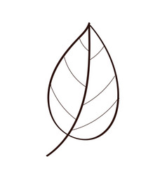 Leaf plant ecology line style icon vector