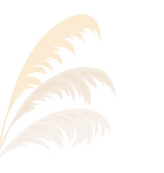 Silver pampas grass card template frame on the vector