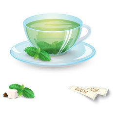 Transparent cup of green tea with mint and sugar vector