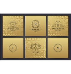 set of golden cards with luxury logos vector image vector image