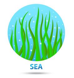 sea nature icon vector image