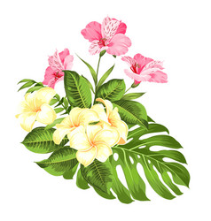 exotic flowers bouquet of color bud garland label vector image