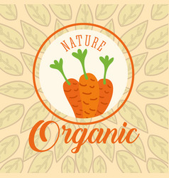 food organic nature vector image