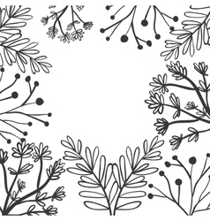 frame with a variety of plants vector image