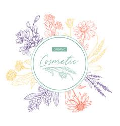 herbal organic cosmetics hand drawn sticker vector image