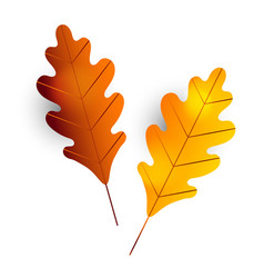 Two autumn oak leaves leaf icon branch vector