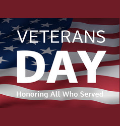 Veterans day banner with us flag vector