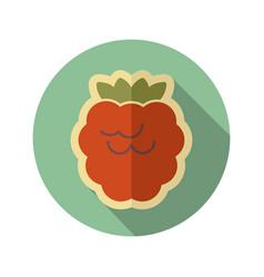 raspberry flat icon fruit vector image vector image