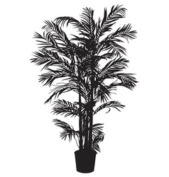 Bamboo tree silhouetter vector
