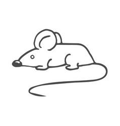 cartoon white mouse isolated vector image