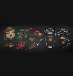 chalked coffee cups and plants vector image