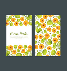 green herbs card template with beautiful flowers vector image