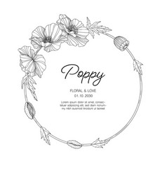 hand drawn poppy floral greeting card background vector image