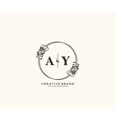 Initial ay letters hand drawn feminine and floral vector