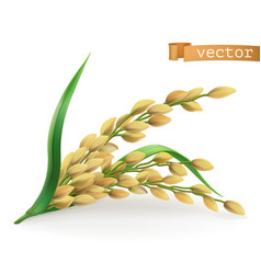 rice 3d icon vector image