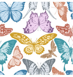 seamless pattern with hand drawn pastel papilio vector image