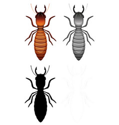 set termite charatcer vector image