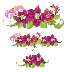 Tropical flower elements pattern vector image