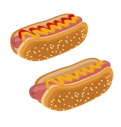 Two hot dogs vector