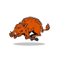 Wild Hog Jumping vector image