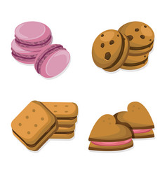 Delicious dessert chocolate cookies set collection vector
