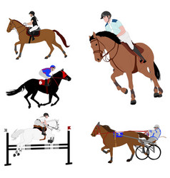 Equestrian sports dressage jump show harness vector