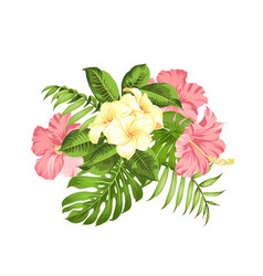 exotic flowers bouquet color bud garland label vector image