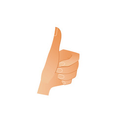 human hand showing thumbs up gesture isolated on vector image