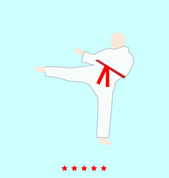 Karate man set it is color icon vector