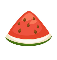 slice of refreshing watermelon vector image