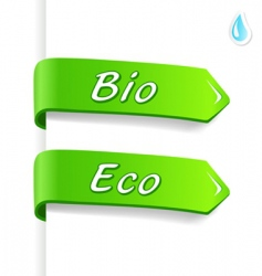 bio and eco tags vector image
