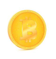 coin of virtual currency bitcoin the coin is vector image