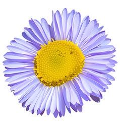 A big flower vector