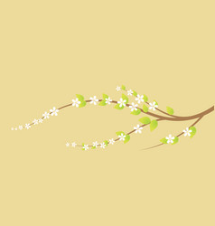 Blooming cherry tree branch in spring vector