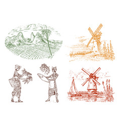 cocoa or coffee plantation vintage farm vector image