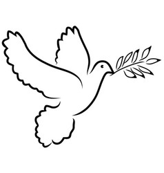 Dove olive vector