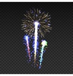 Festive patterned fireworks isolated bursting in vector