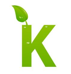 green eco letter k illiustration vector image
